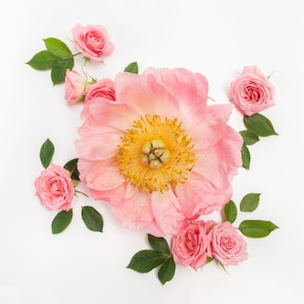 Pink roses, green leaves and poeny
