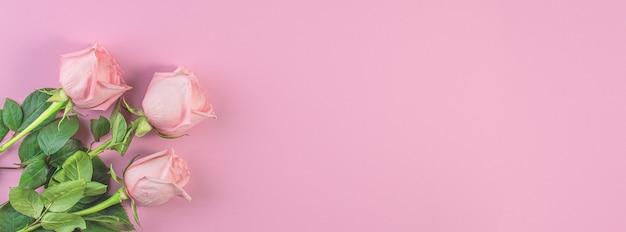 Розовые розы на пастельно-розовом фоне. день рождения, матери, валентинки, женщины, концепция дня свадьбы. весенний сезон цветения. минимальная праздничная композиция. копировать пространство