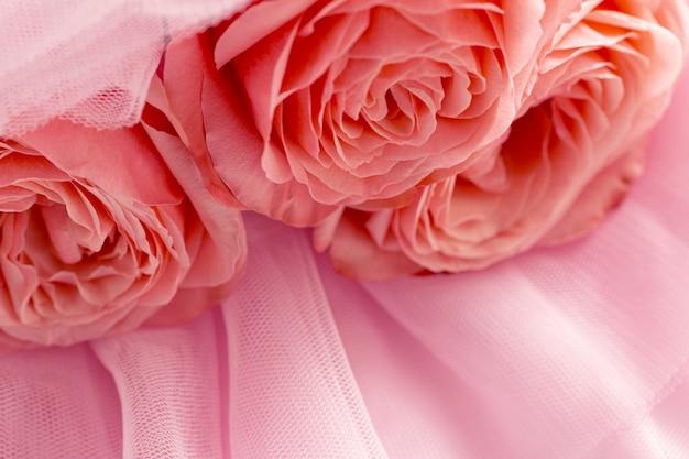 핑크 베일에 핑크 장미 추상적 인 배경 상위 뷰 매크로