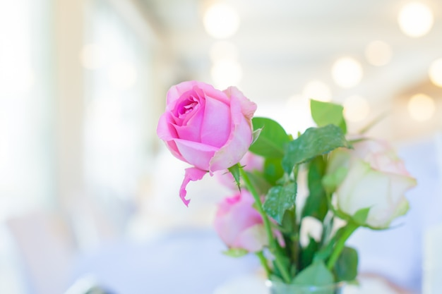 Pink roses in water glass on white table
