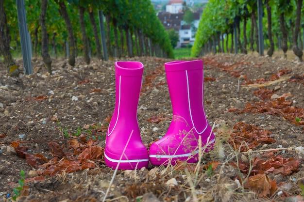 Розовые резиновые сапоги с красивым зеленым виноградником осенью. стиль кантри.