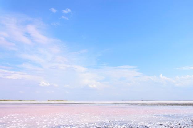 Розовое соленое озеро с отложениями кристаллической соли. озеро сиваш, украина