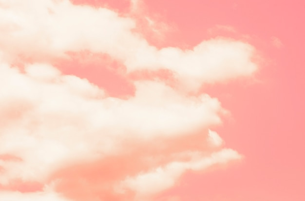 Pink sky with blurred pattern background
