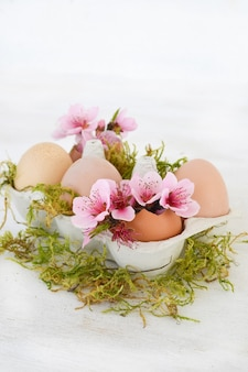 Pink spring flowers in egg shells on white background. copy space.