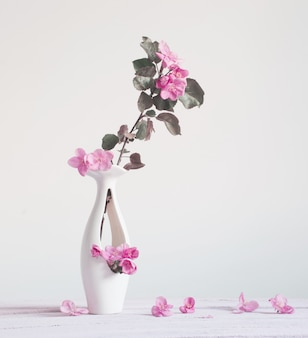 Pink spring flowers in vase on white background
