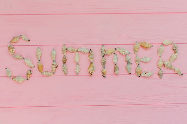 Pink surface with decorative seashells for summer