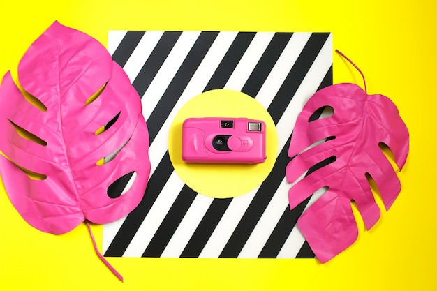 Pink tropical palm leaf of monstera and camera.