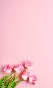 분홍색 배경 앞에 분홍색 튤립 꽃 꽃다발