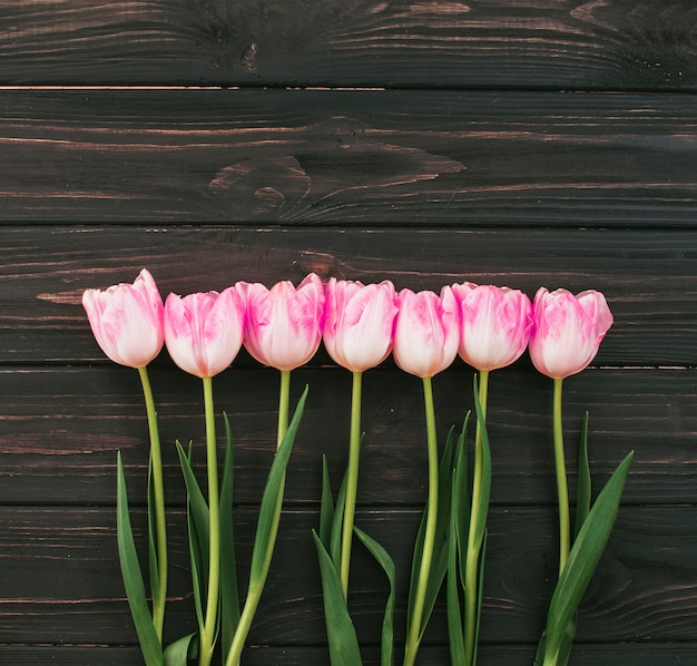 Pink tulip flowers scattered on wooden table