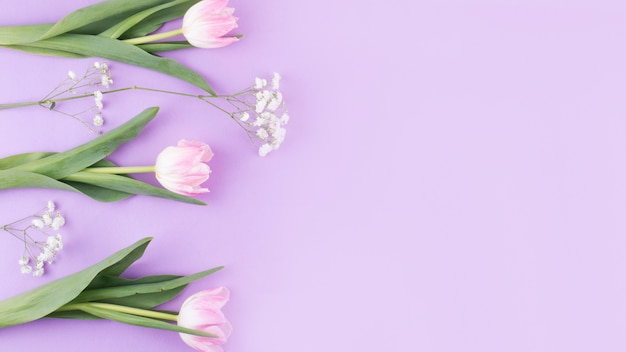 Pink tulip flowers with branches on table