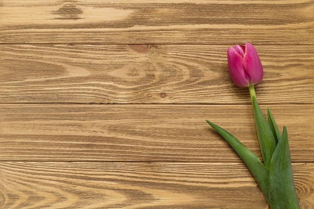 Розовый тюльпан на коричневой деревянной предпосылке. фото высокого качества