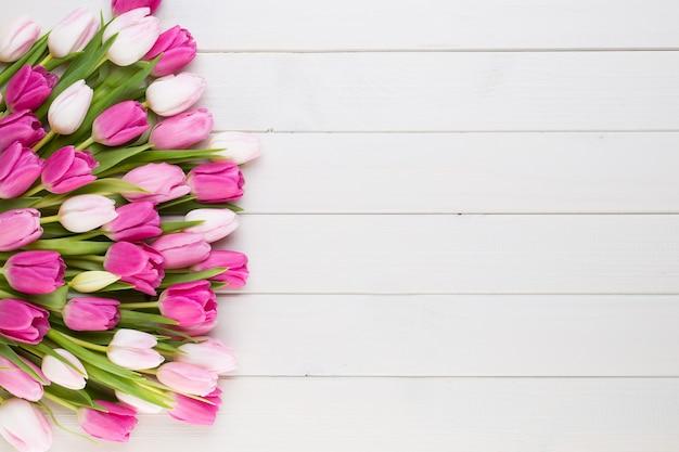 Розовый тюльпан на белой поверхности. пасхальная поверхность.