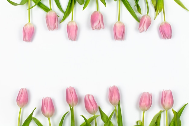 Pink tulips are arranged in a row above and below on a white background spring floral frame