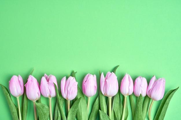 緑の背景にピンクのチューリップの境界線。コピースペース、上面図