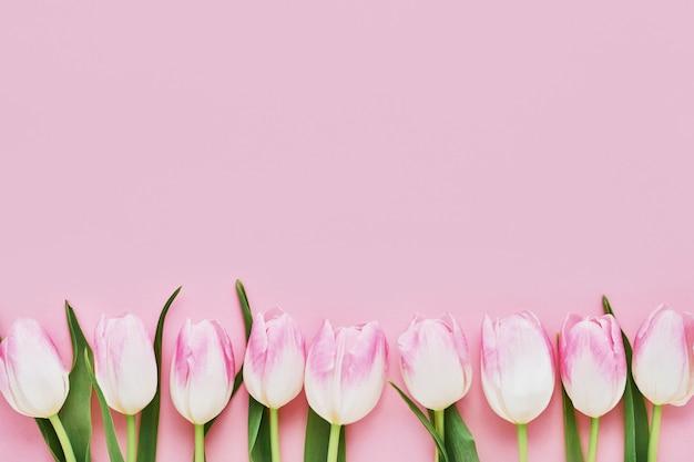 ピンクの背景にピンクのチューリップの境界線。母の日、バレンタインデー、誕生日のお祝いのコンセプトです。コピースペース、トップビュー