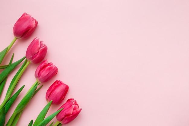 Розовые тюльпаны бордюр на розовом