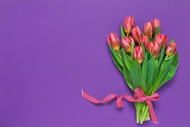 Розовые тюльпаны украшены лентой на фиолетовом фоне. вид сверху, копия пространства.