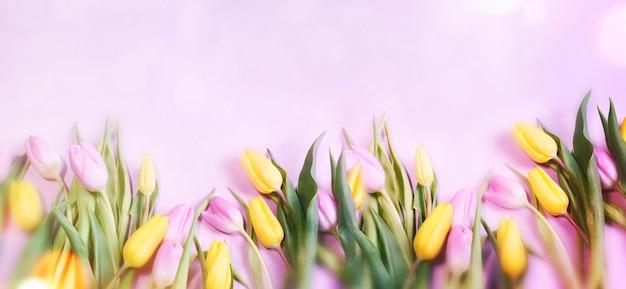 Розовые тюльпаны на 8 марта, международный женский день, день рождения, день святого валентина или день матери