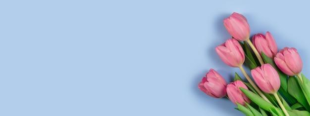 Розовые тюльпаны цветы на синем фоне. карта на день матери, 8 марта, счастливой пасхи, дня святого валентина, дня рождения. жду весны. открытка. плоская планировка, вид сверху, длинный широкий баннер. копировать пространство