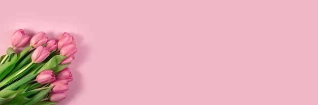 ピンクの背景にピンクのチューリップの花。母の日、3月8日、ハッピーイースター、バレンタインデー、母の日のためのカード。春を待っています。グリーティングカード。フラットレイ、トップビュー、ロングワイドバナー。コピースペース