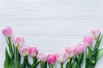 Pink tulips on a white wooden background. Top view and flat lay.