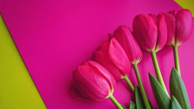 ピンクの背景にピンクのチューリップ。テキストスペースの画像。春のコンセプト