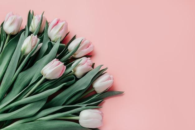 Розовые тюльпаны на розовом фоне, женский день поздравительной открытки