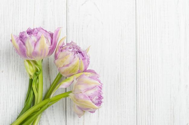 白いぼろぼろの木の板にピンクのチューリップ Premium写真
