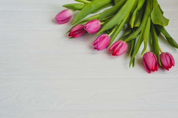 Pink tulips on a white wooden table. background