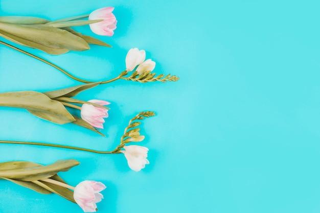 Розовые тюльпаны с цветами на синем столе