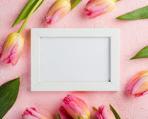 Pink tulips with frame