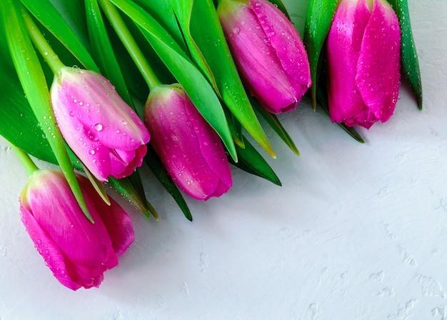 明るい背景に水滴とピンクのチューリップ
