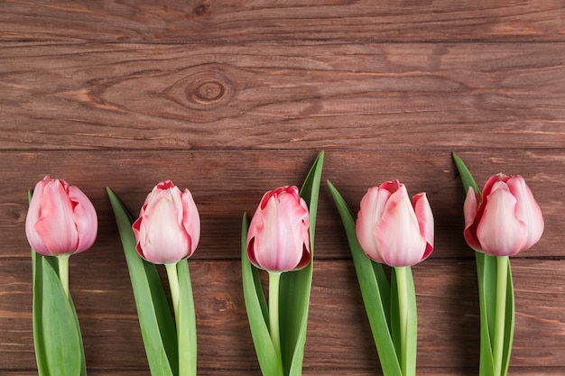 Pink tulips on wooden textured background