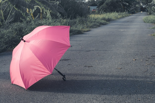 Pink umbrella on concrete floor and green grass field in the park
