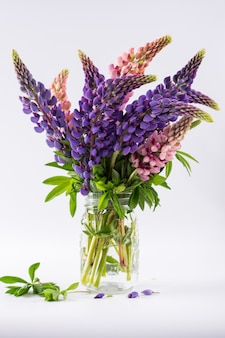 Pink and violet lupins in glass vase isolated on white surface