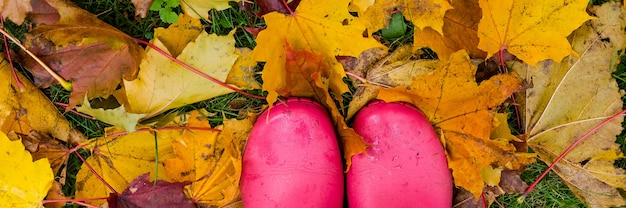 Pink wellingtons .rubber boots of a child in a lawn after a rain on a stormy autumn day