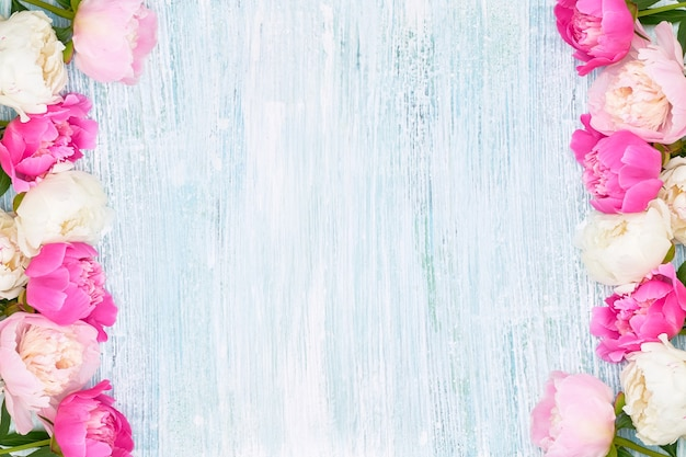 Pink and white peonies border on blue background. holiday background, copy space, top view. mothers day, valentines day, birthday concept.
