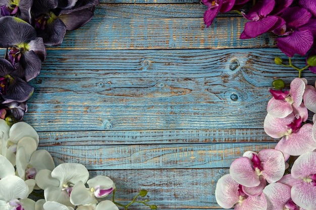 Pink white purple and violet orchid flowers on blue wooden background