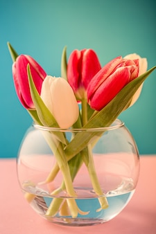 Pink and white tulips in glass vases on the blue surface. a gift for woman's day. greeting card for mother's day. copy space