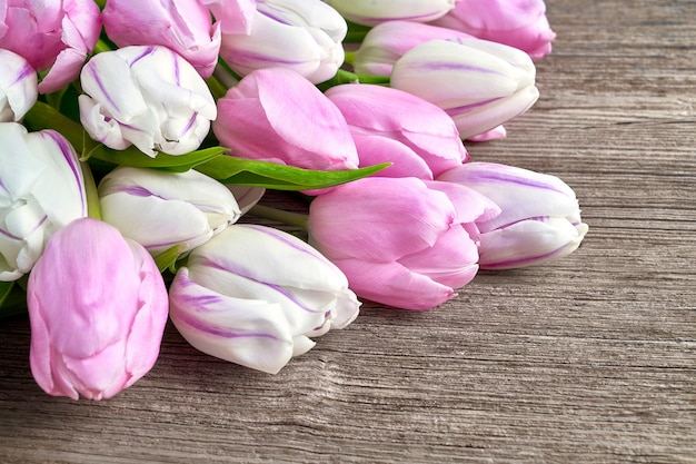 Pink and white tulips on old wooden