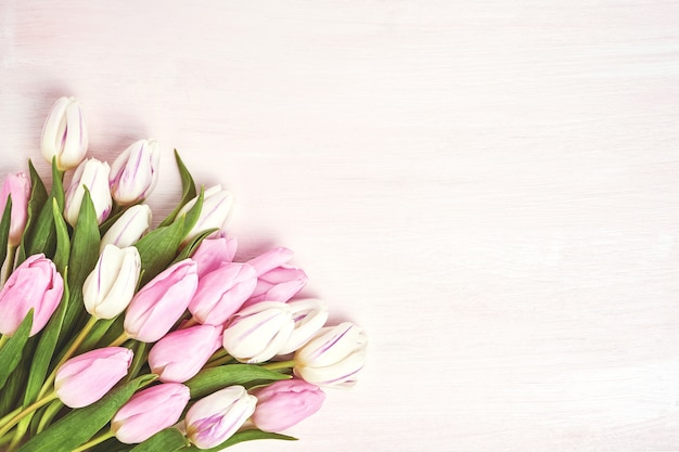 Pink and white tulips in vase.