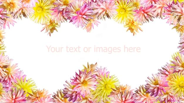 ピンクイエローのダリアの花は、2つのハート型のフレームを成形します(白で分離された、幅の広いモニターの側面の比率)