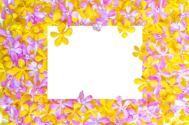 Pink and yellow orchids with white paper