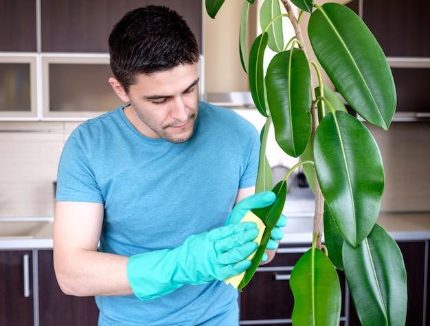 大人の男が台所でpipalをクリーニング