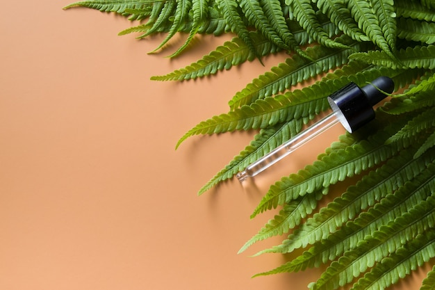 오렌지 표면에 녹색 고사리 잎에 오일, 혈청 피펫