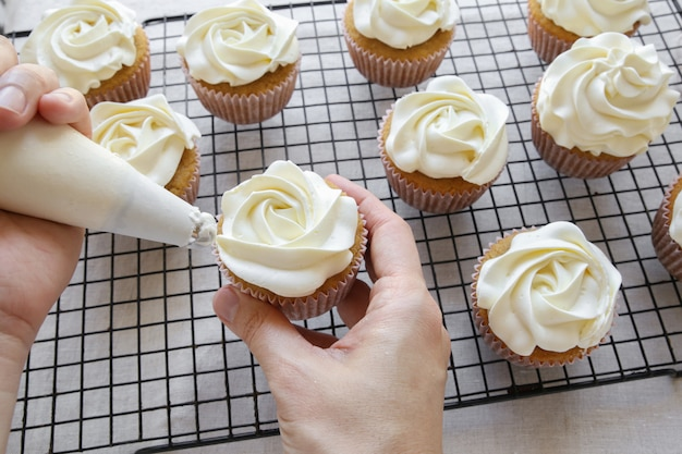 Piping rose flower frosting on vanilla cupcakes