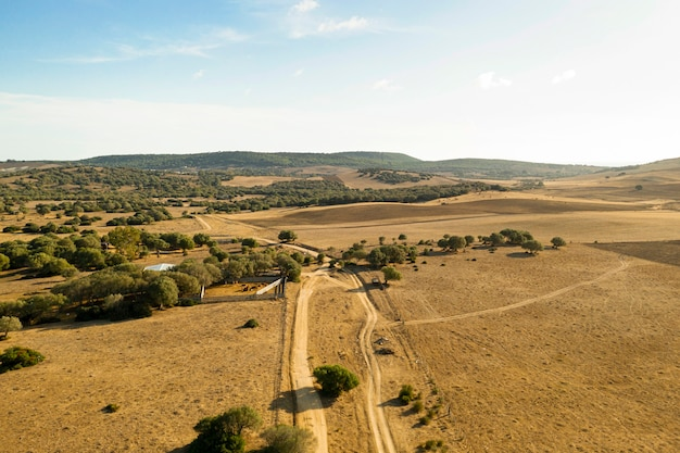 Plain and forest with road taken by drone