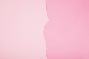 Plain pink backdrop