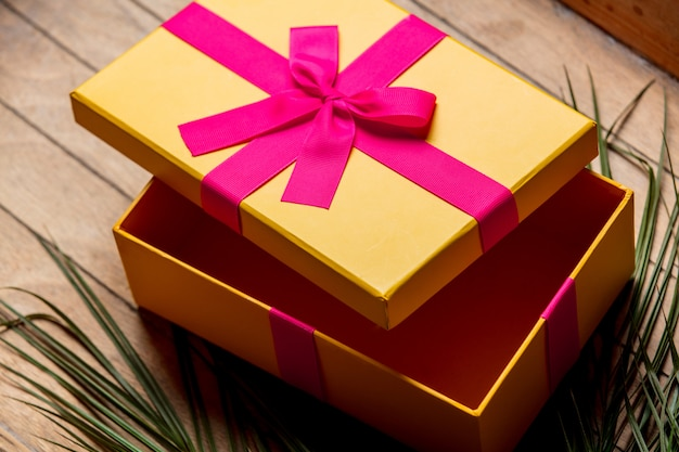 Plam branch and holiday gift box