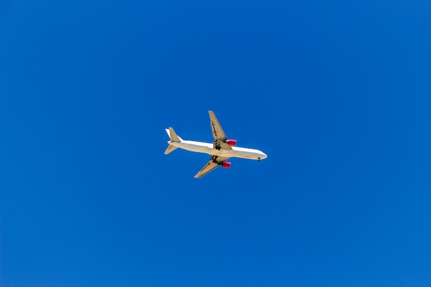 A plane flying in the blue sky without white clouds